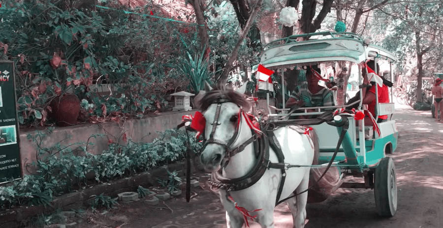 horse cart in indonesia gili trawangan